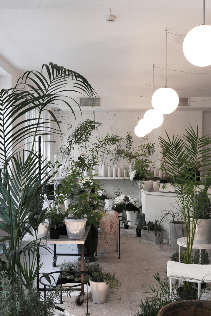 Luminaire Saint Martin D Heres planteinspirasjon fra mina milanda | elisabeth heier